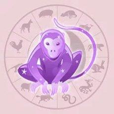 Гороскоп Обезьяны <strong>спорт 2018 | Год обезьяны</strong> на 2018 год (земляная, водная, деревянная, огненная, металлическая)