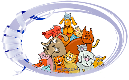 Праздник 19 августа 2018 года Всемирный день бездомных животных, празднуется в третью субботу августа