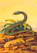 13 лунных периодов в гороскопе Майя - Змея (рожденные с 2 майя по 29 майя)