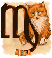 Гороскоп кошек, кошка Дева